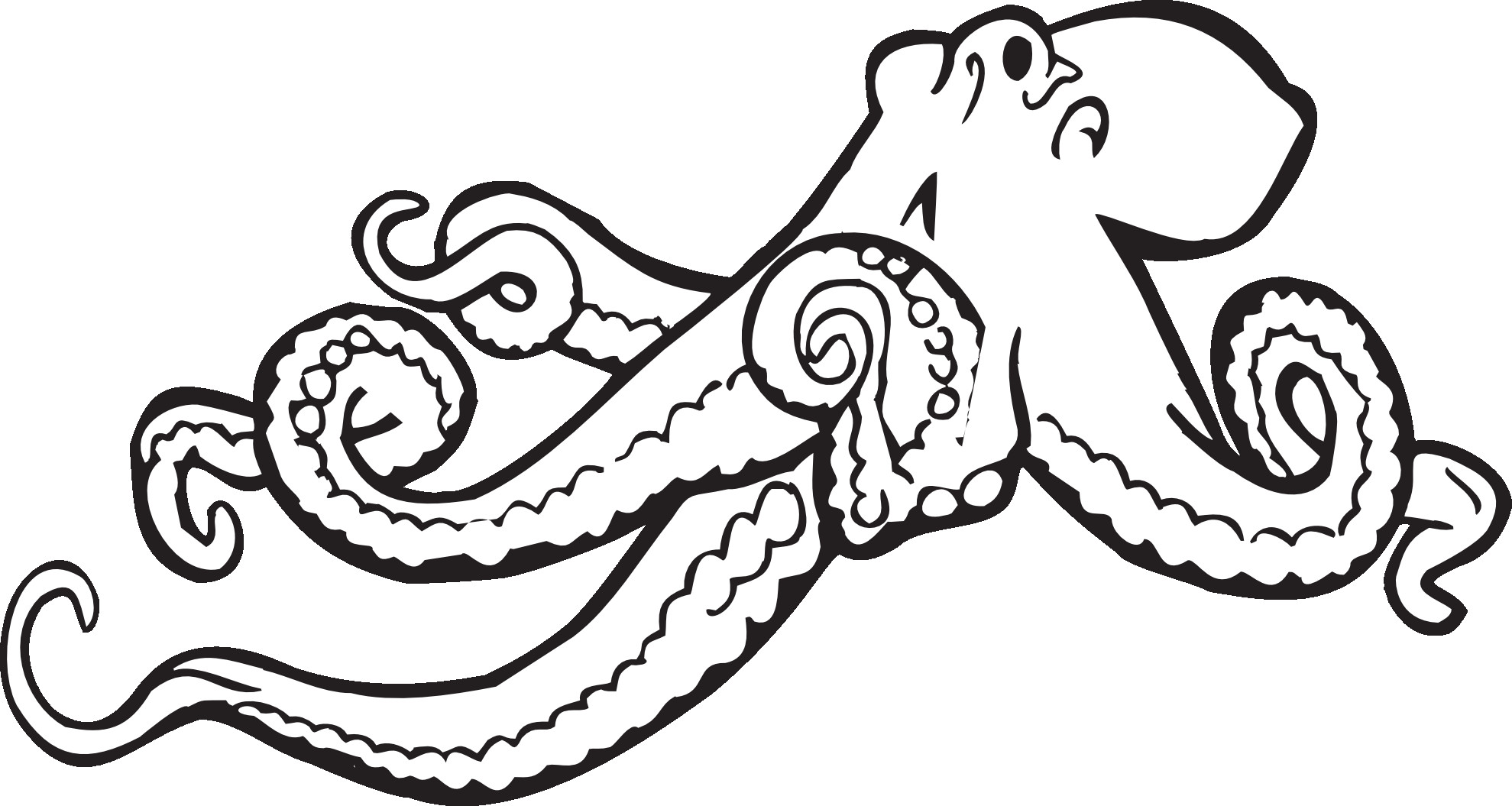 Octopus Coloring Book Pages  Octopus Coloring Pages Preschool and Kindergarten