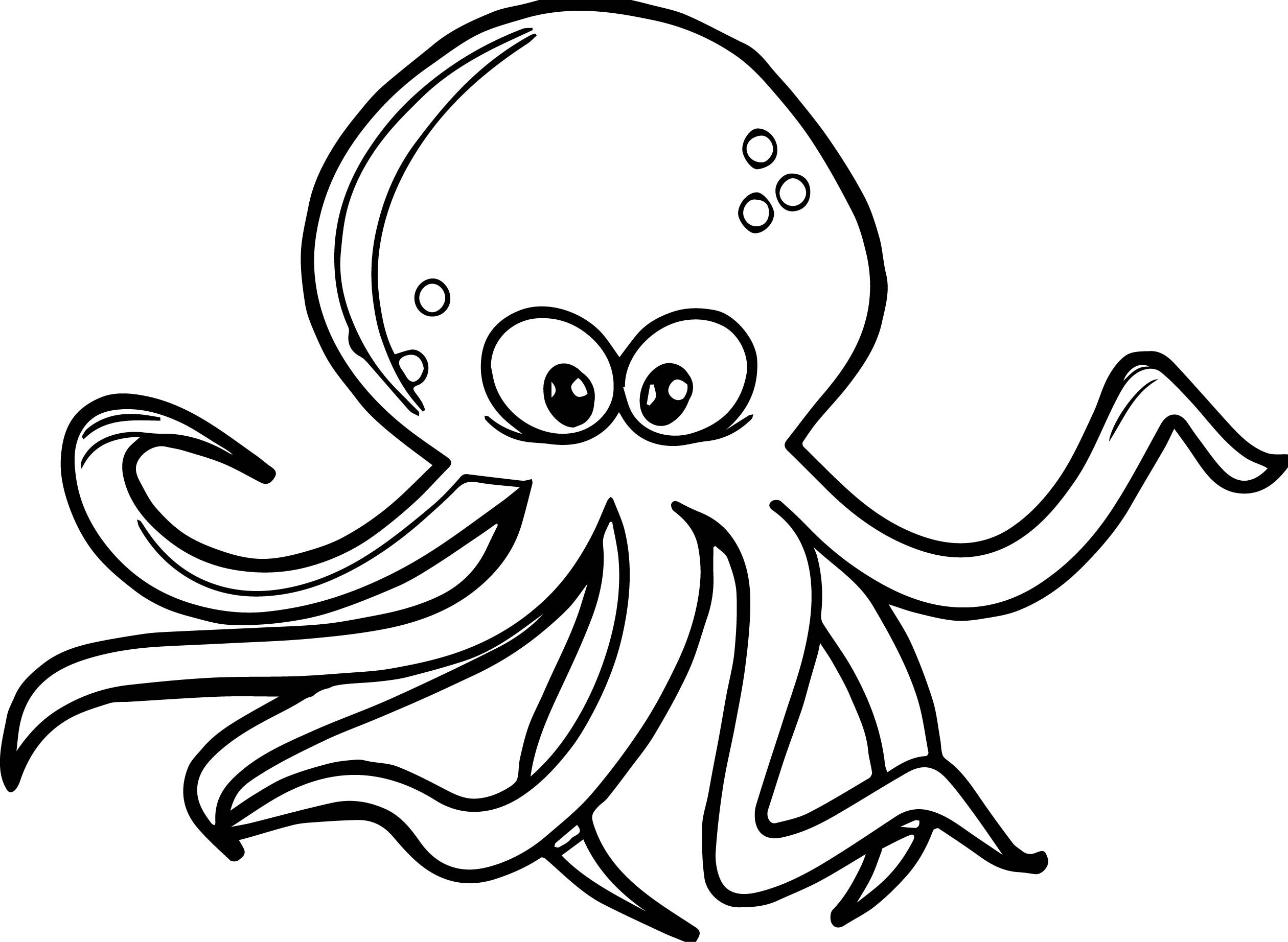 Octopus Coloring Book Pages  Octopus Coloring Page
