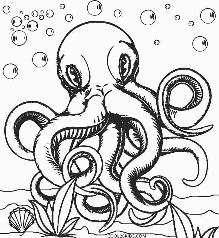 Octopus Coloring Book Pages  Printable Octopus Coloring Page For Kids
