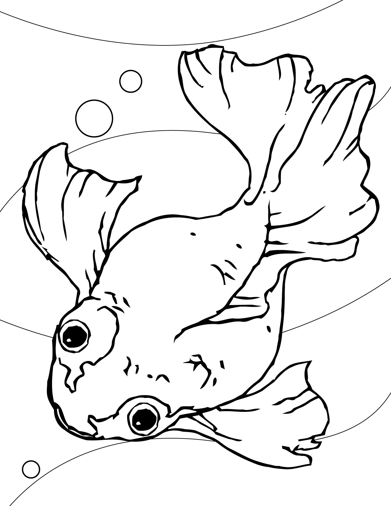 Online Coloring Sheets For Kids  Free Printable Goldfish Coloring Pages For Kids
