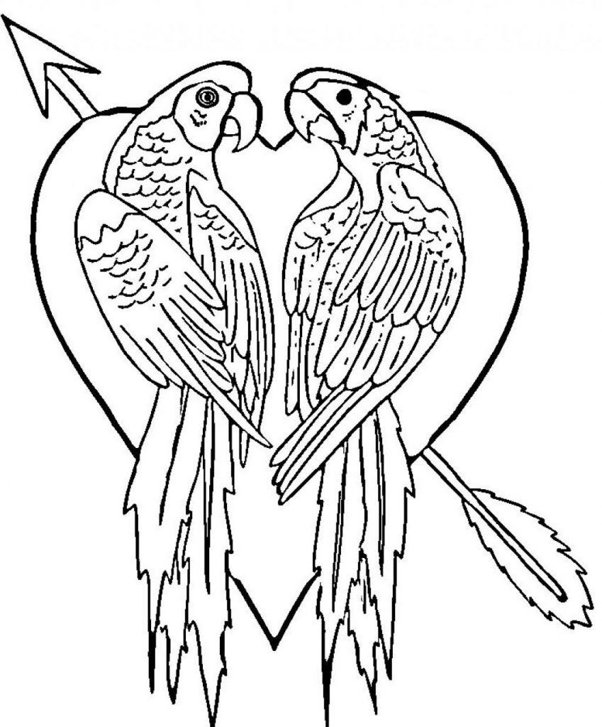 Online Coloring Sheets For Kids  Free Printable Parrot Coloring Pages For Kids