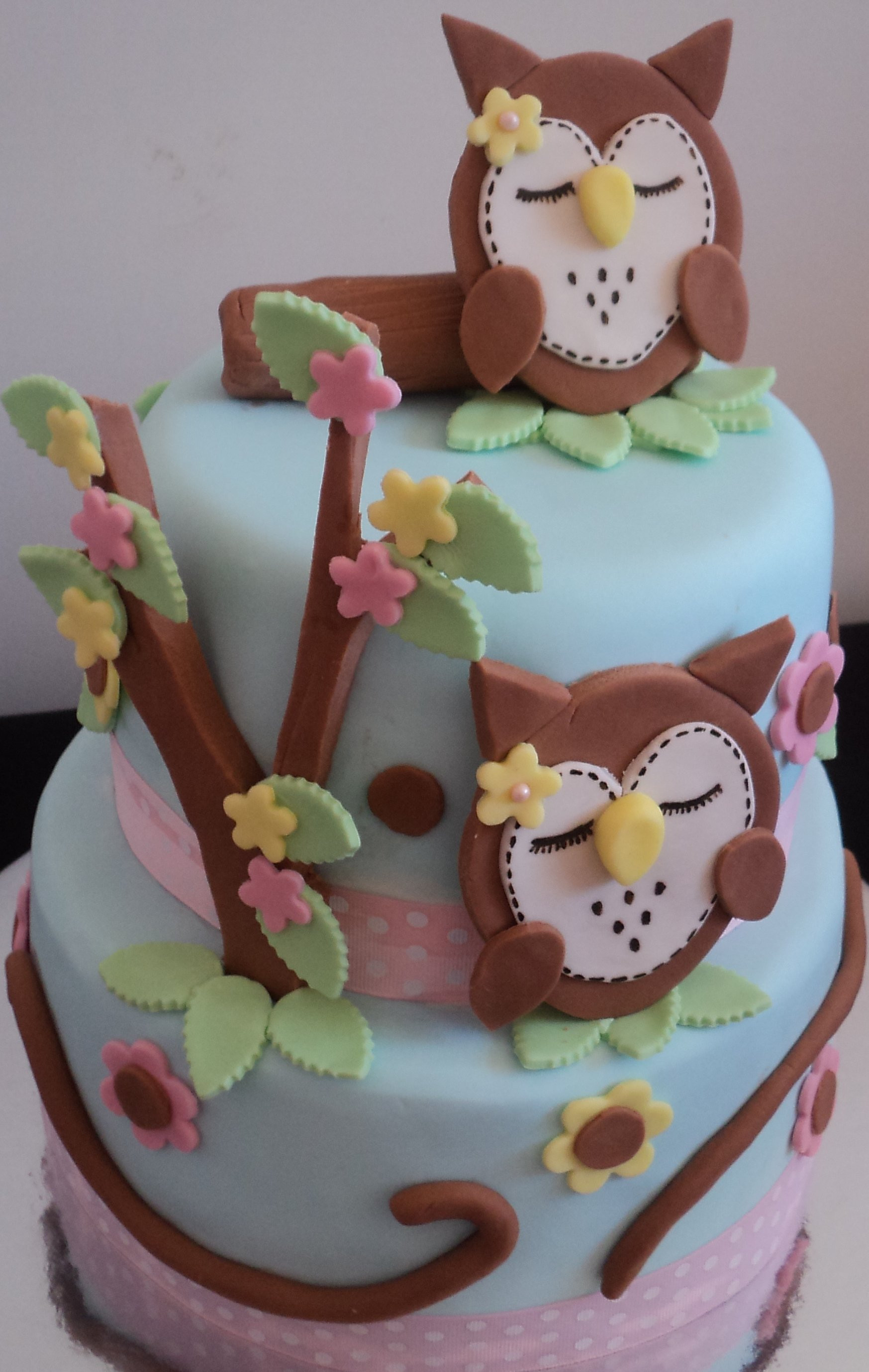 Owl Birthday Cake  Owl Cakes – Decoration Ideas
