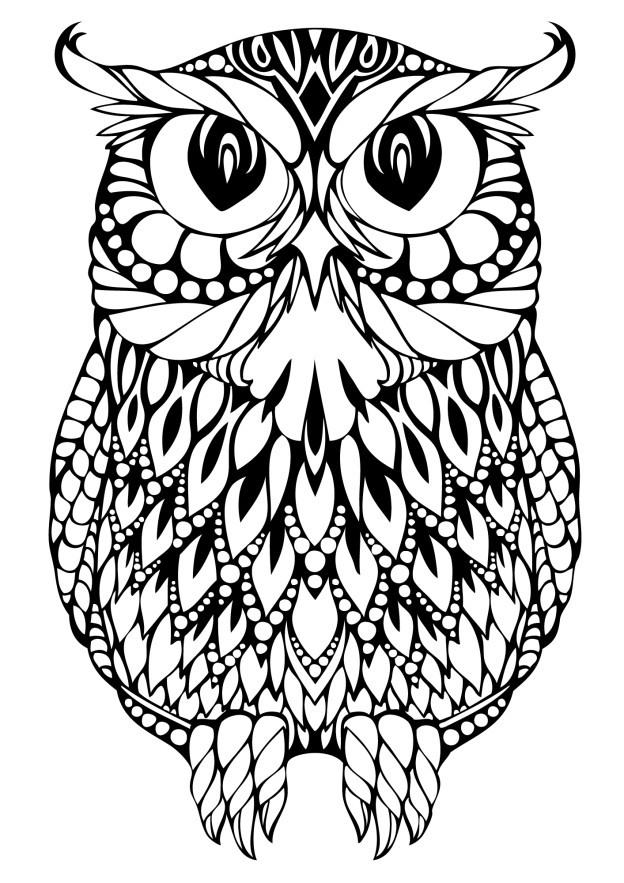 Owl Coloring Pages For Kids Printable  OWL Coloring Pages for Adults Free Detailed Owl Coloring