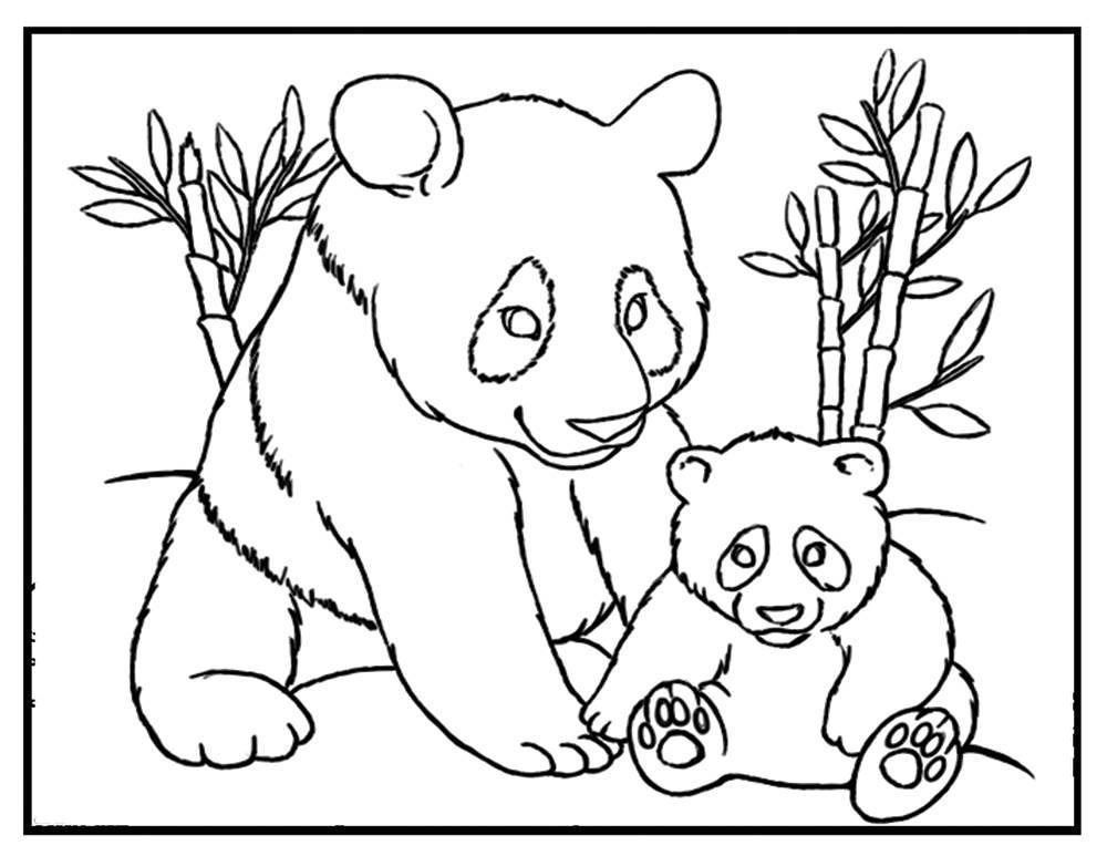 Panda Bear Coloring Pages  Panda coloring sheet Panda coloring page panda printable