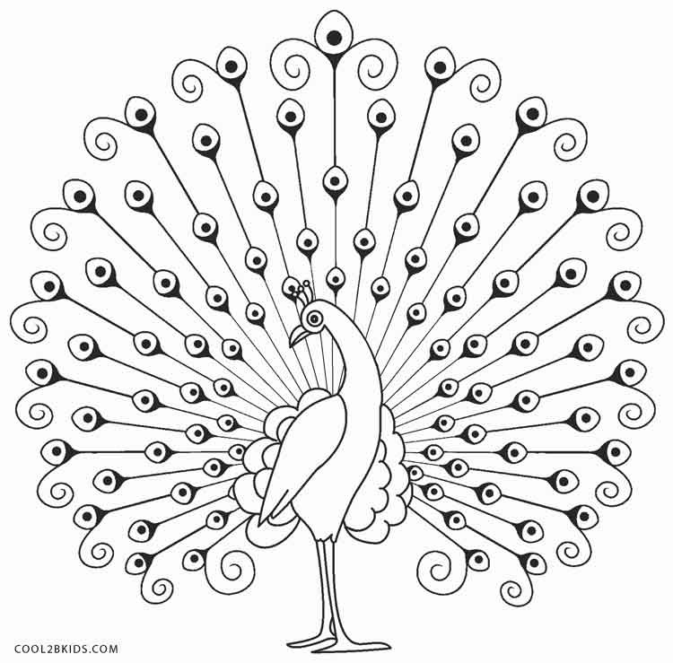 Peacock Coloring Sheet  Printable Peacock Coloring Pages For Kids