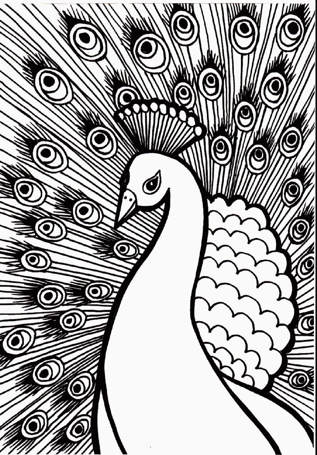 Peacock Coloring Sheet  38 Unique Peacock Coloring Pages For Kids Gianfreda