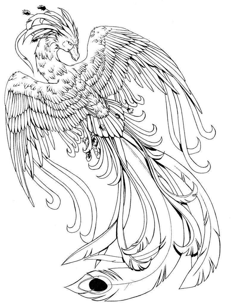 Pheonix Coloring Pages  kissy faceviantart art Phoenix B W