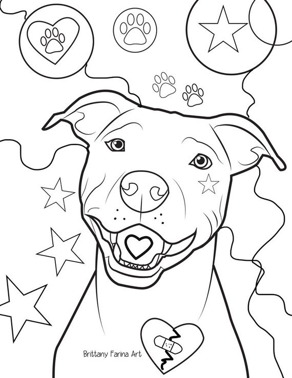 Pit Bull Coloring Book  Pitbull coloring page coloring page