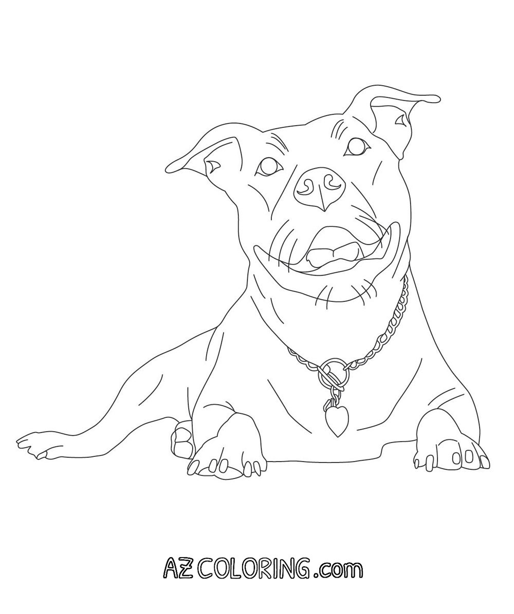 Pit Bull Coloring Book  Coloring Pages Pitbulls Coloring Home