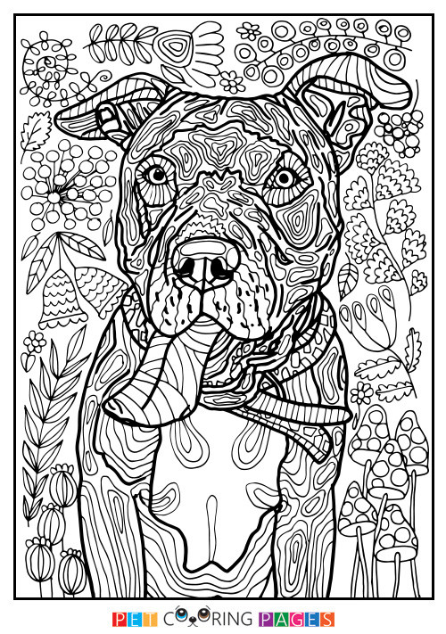 """Pit Bull Coloring Book  American Pit Bull Terrier Coloring Page """"Tank"""" ZileArt"""