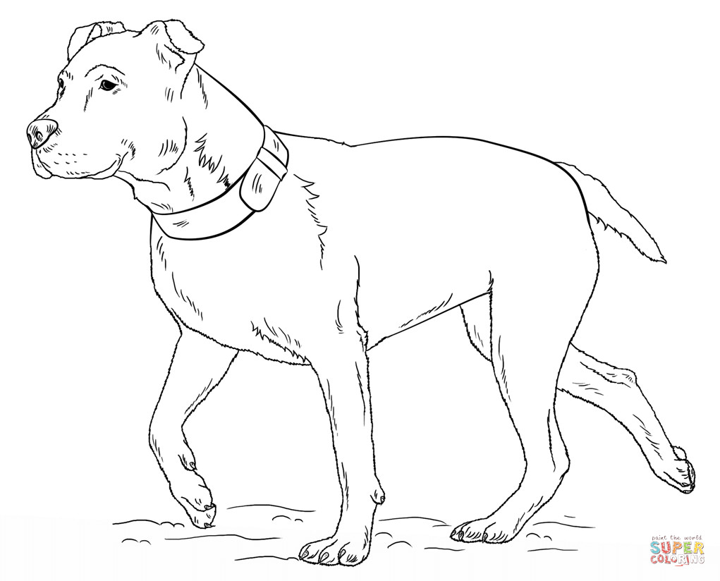 Pit Bull Coloring Book  Pitbull Coloring Pages Printable Coloring Home