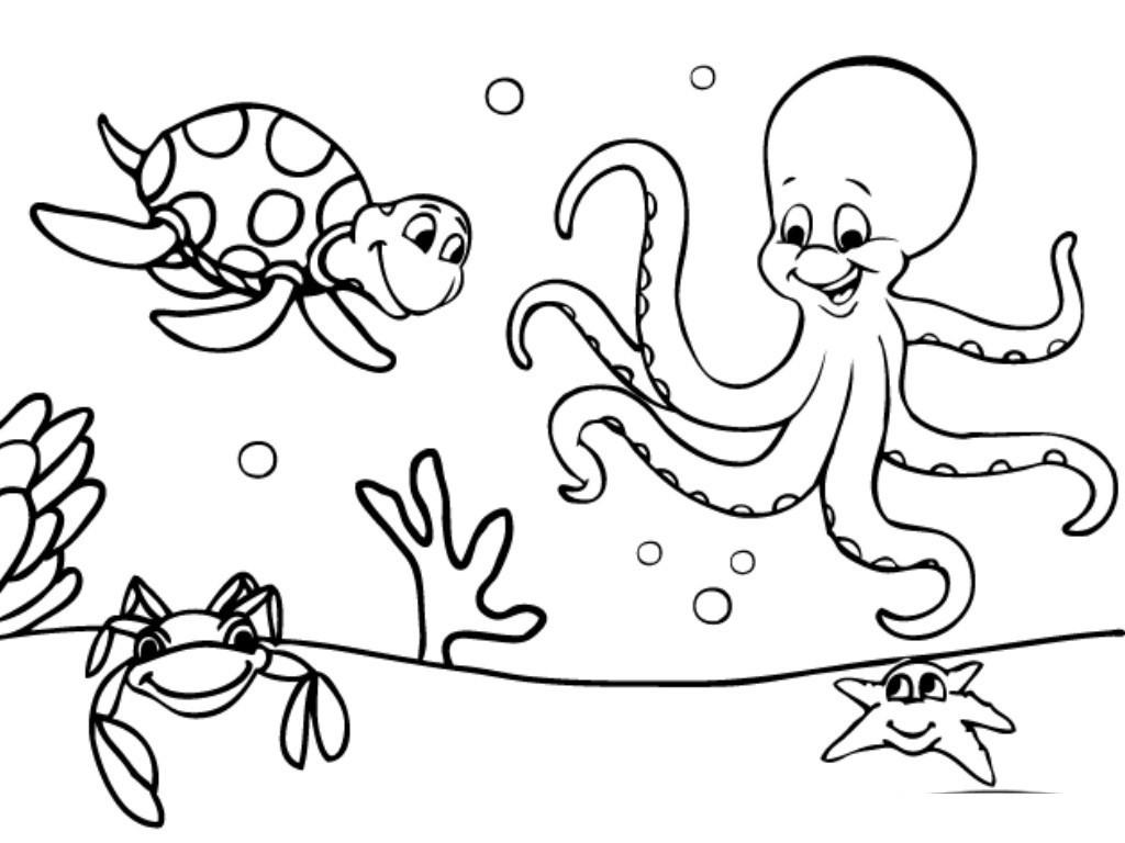 Preschool Coloring Sheets Ocean  Simple Ocean Coloring Pages Free Printable Ocean Coloring