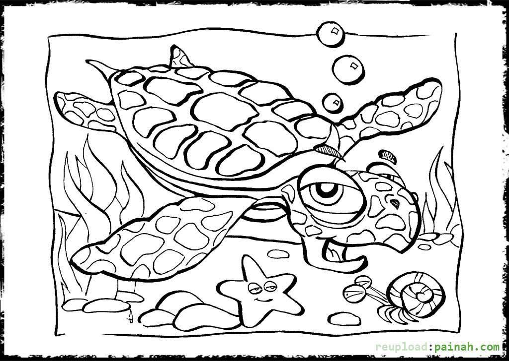 Preschool Coloring Sheets Ocean  Ocean Coloring Pages Free Printable