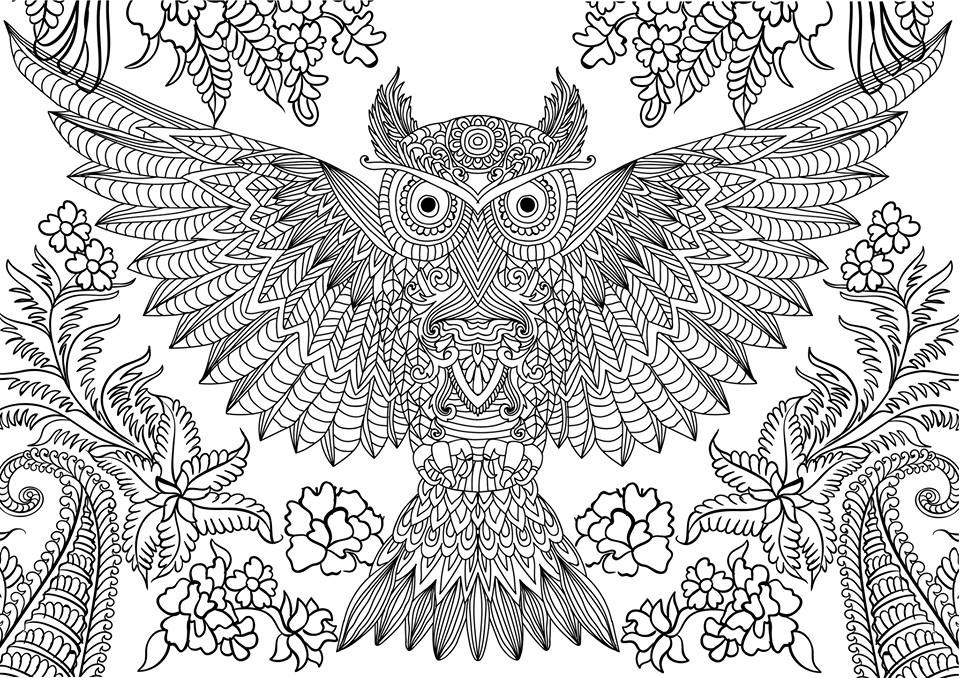 Best ideas about Pretty Coloring Pages For Adults . Save or Pin cute owl coloring pages for adults gianfreda Now.