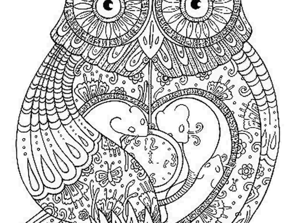 Printable Adult Coloring Books  Coloring Pages of Owls for Adults Bestofcoloring