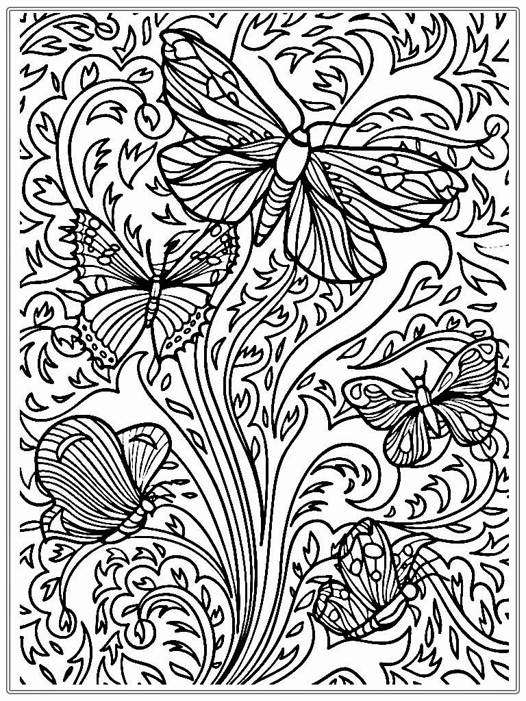 Printable Coloring Pages Adults Free  Adults Color Pages Free Printable Butterflies Templates