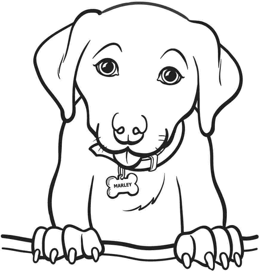 Printable Coloring Pages Of Animals  Printable Animal Dogs Coloring Sheets For Kids Girls 8611