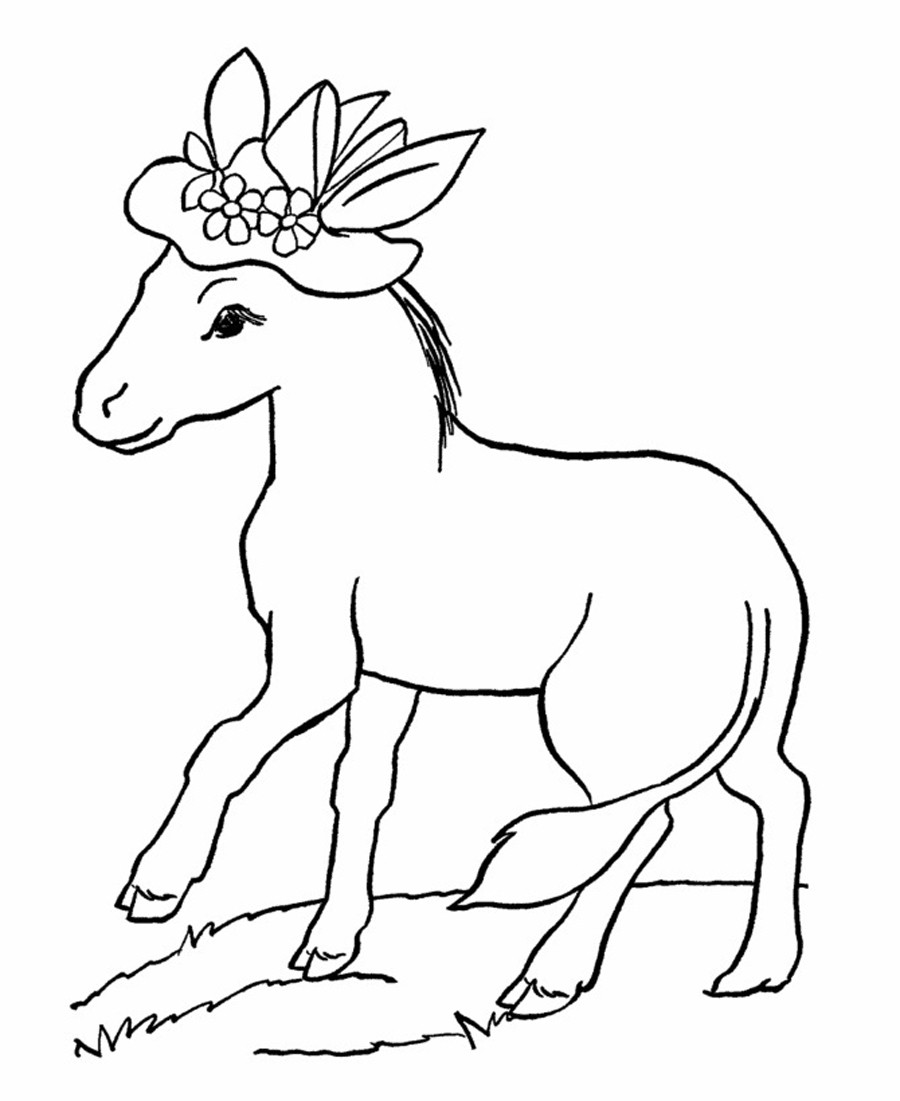 Printable Coloring Pages Of Animals  Free Printable Donkey Coloring Pages For Kids