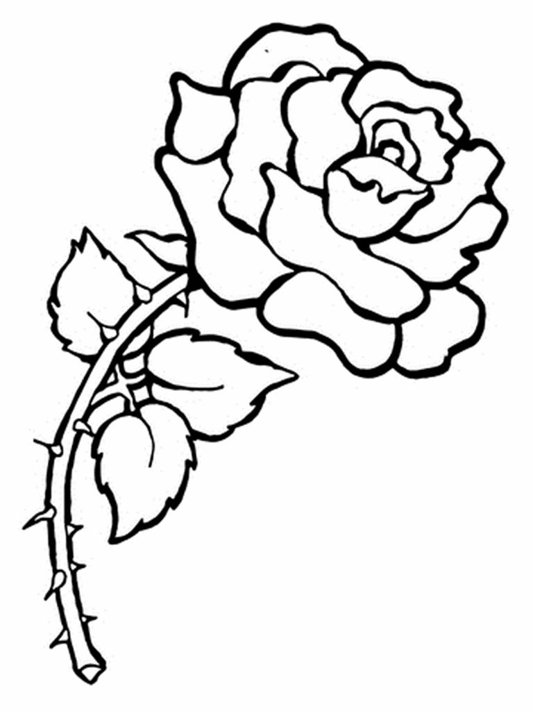 Printable Coloring Sheets Free  Free Printable Flower Coloring Pages For Kids Best