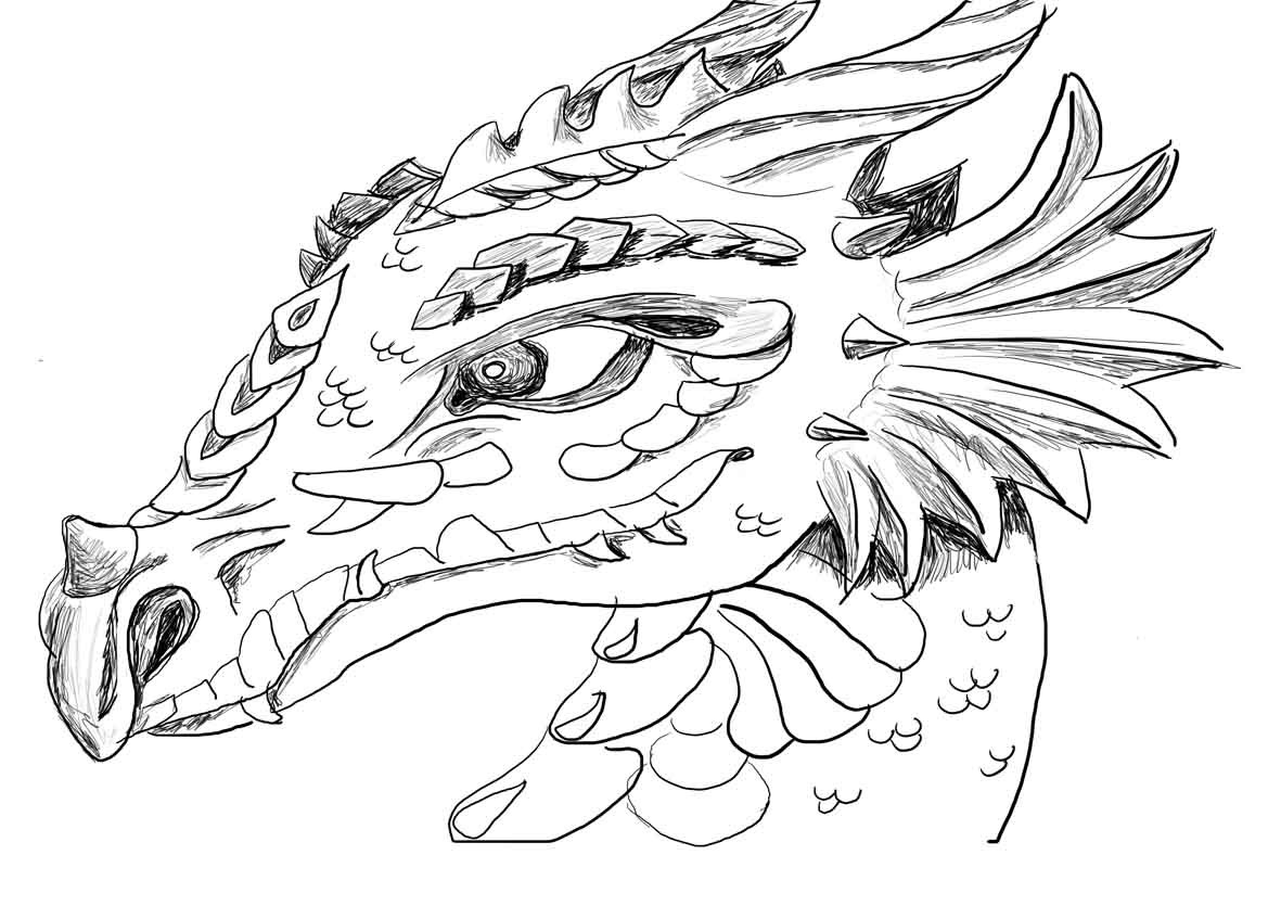 Printable Dragon Coloring Pages  dragon coloring pages printable