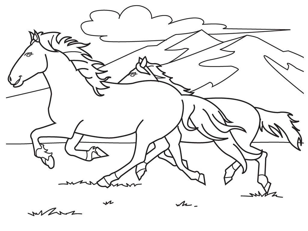 Printable Horse Coloring Pages For Adults  Free Printable Horse Coloring Pages For Kids