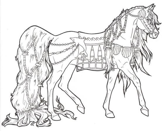 Printable Horse Coloring Pages For Adults  Free Printable Coloring Book Pages Best Adult Coloring