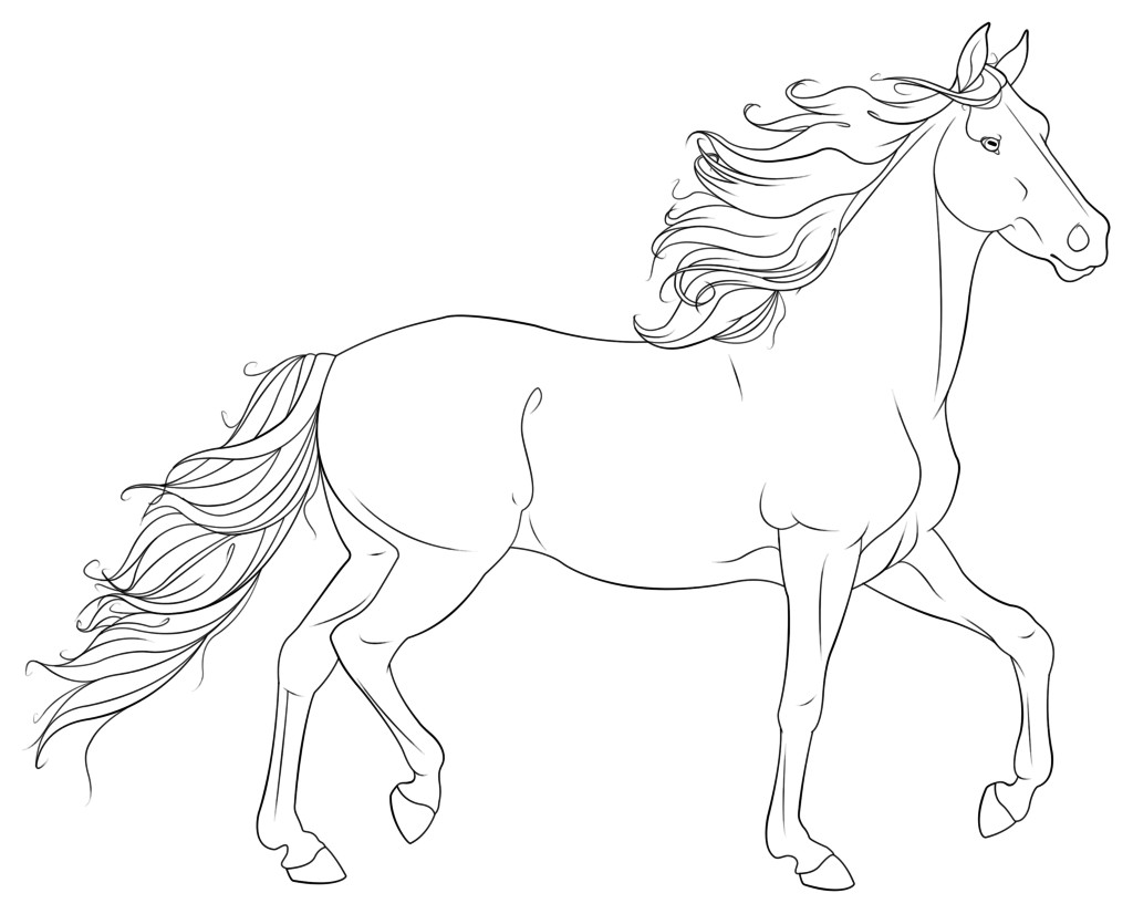 Printable Horse Coloring Pages For Adults  Coloring Pages Realistic Horse Coloring Pages