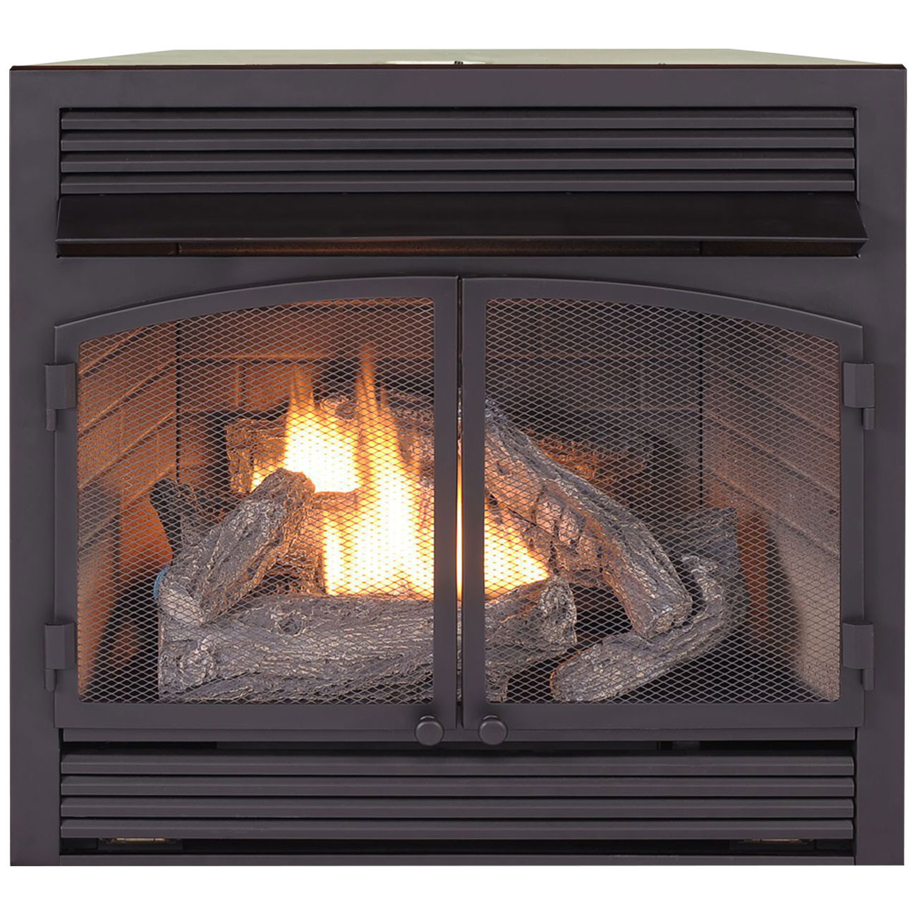 Best ideas about Propane Fireplace Inserts . Save or Pin Dual Fuel Fireplace Insert Zero Clearance 32 000 BTU Now.