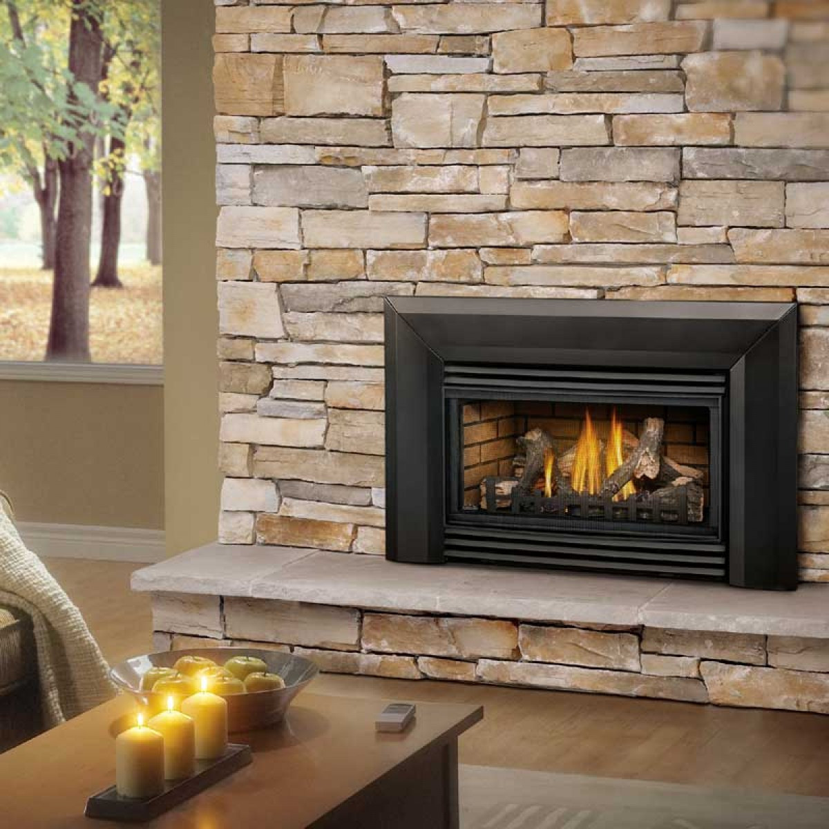 Best ideas about Propane Fireplace Inserts . Save or Pin Napoleon Roxbury 30 Gas Fireplace insert Now.