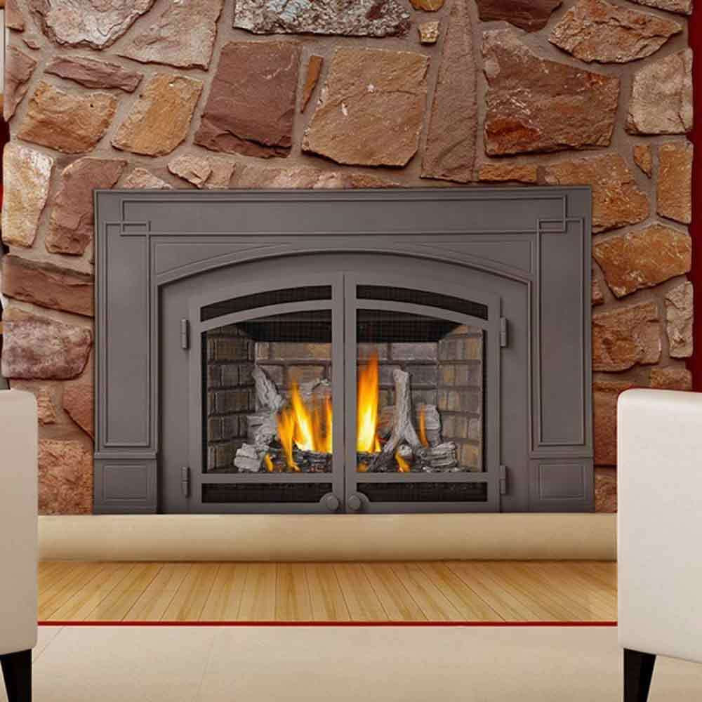 Best ideas about Propane Fireplace Inserts . Save or Pin Napoleon IR3N IR Series Gas Fireplace Insert Now.
