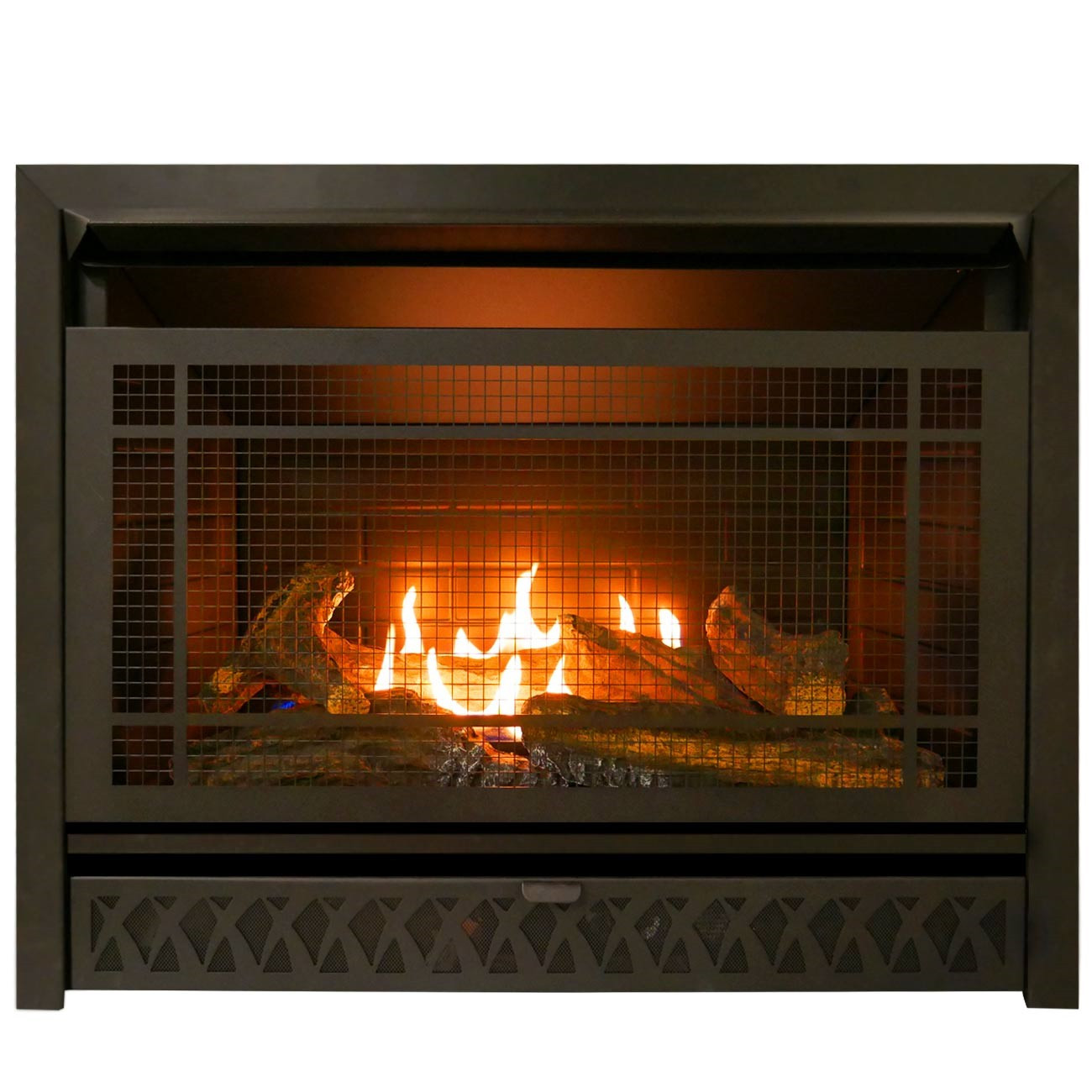 Best ideas about Propane Fireplace Inserts . Save or Pin Gas Fireplace Insert Dual Fuel Technology 26 000 BTU Now.