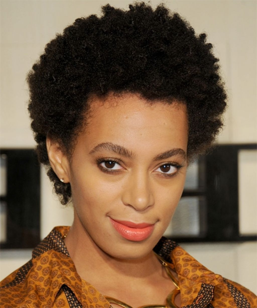 Quick Natural Hairstyles  Natural Hairstyles 16 Short Natural Hairstyles You Will