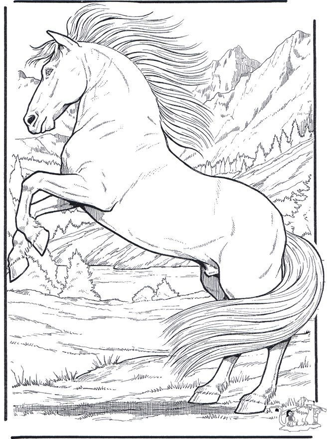 Realistic Animal Coloring Pages  Free Coloring Pages Animals Realistic