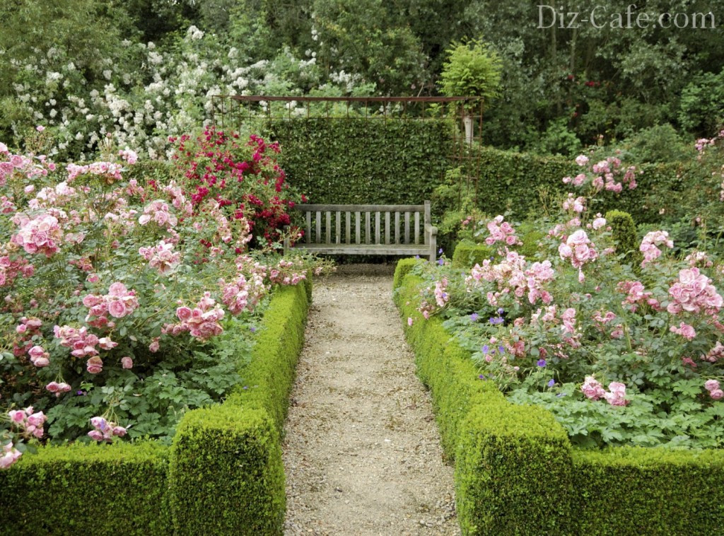 Best ideas about Rose Garden Ideas . Save or Pin Landscaping design with roses – Wilson Rose Garden Now.
