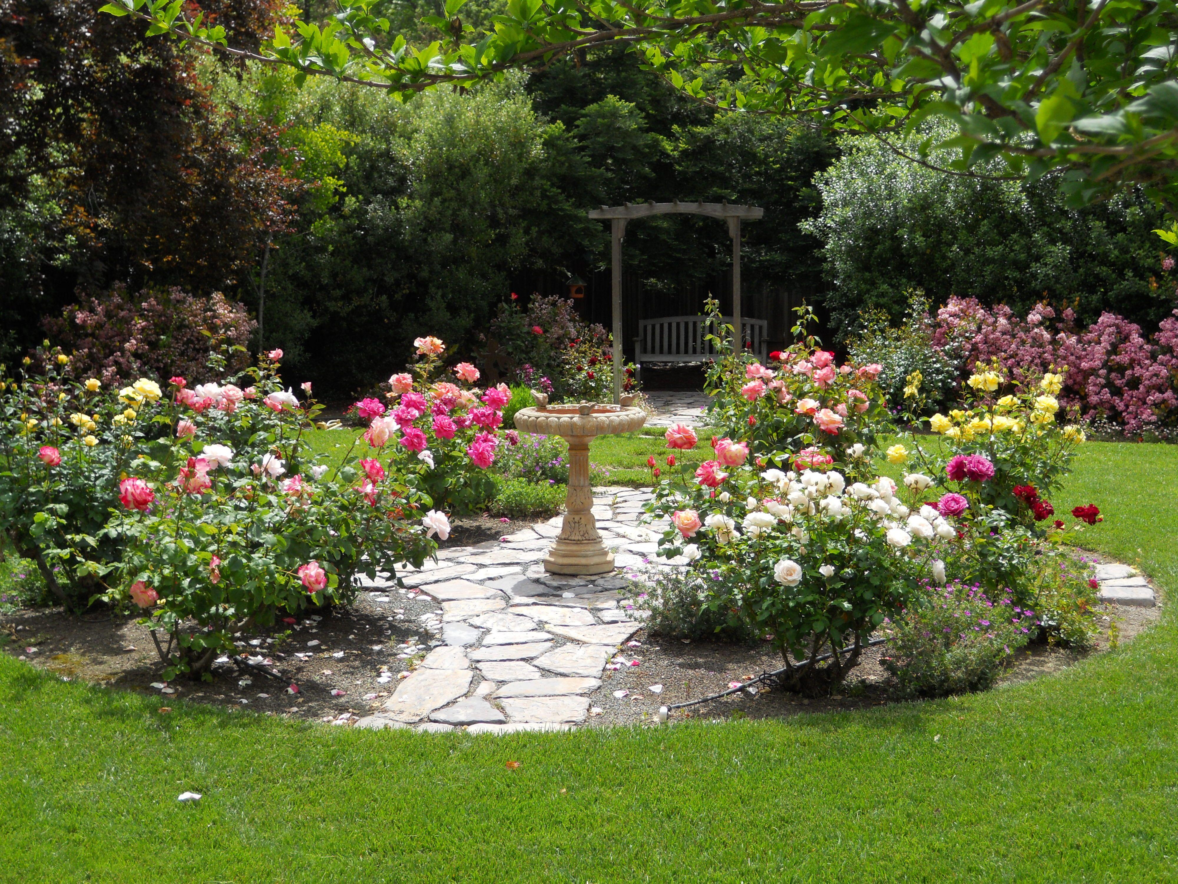 Best ideas about Rose Garden Ideas . Save or Pin Backyard Rose Garden Ideas graph Now.