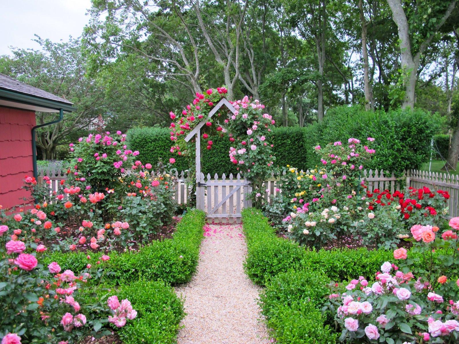 Best ideas about Rose Garden Ideas . Save or Pin Cottage garden design with roses – Wilson Rose Garden Now.