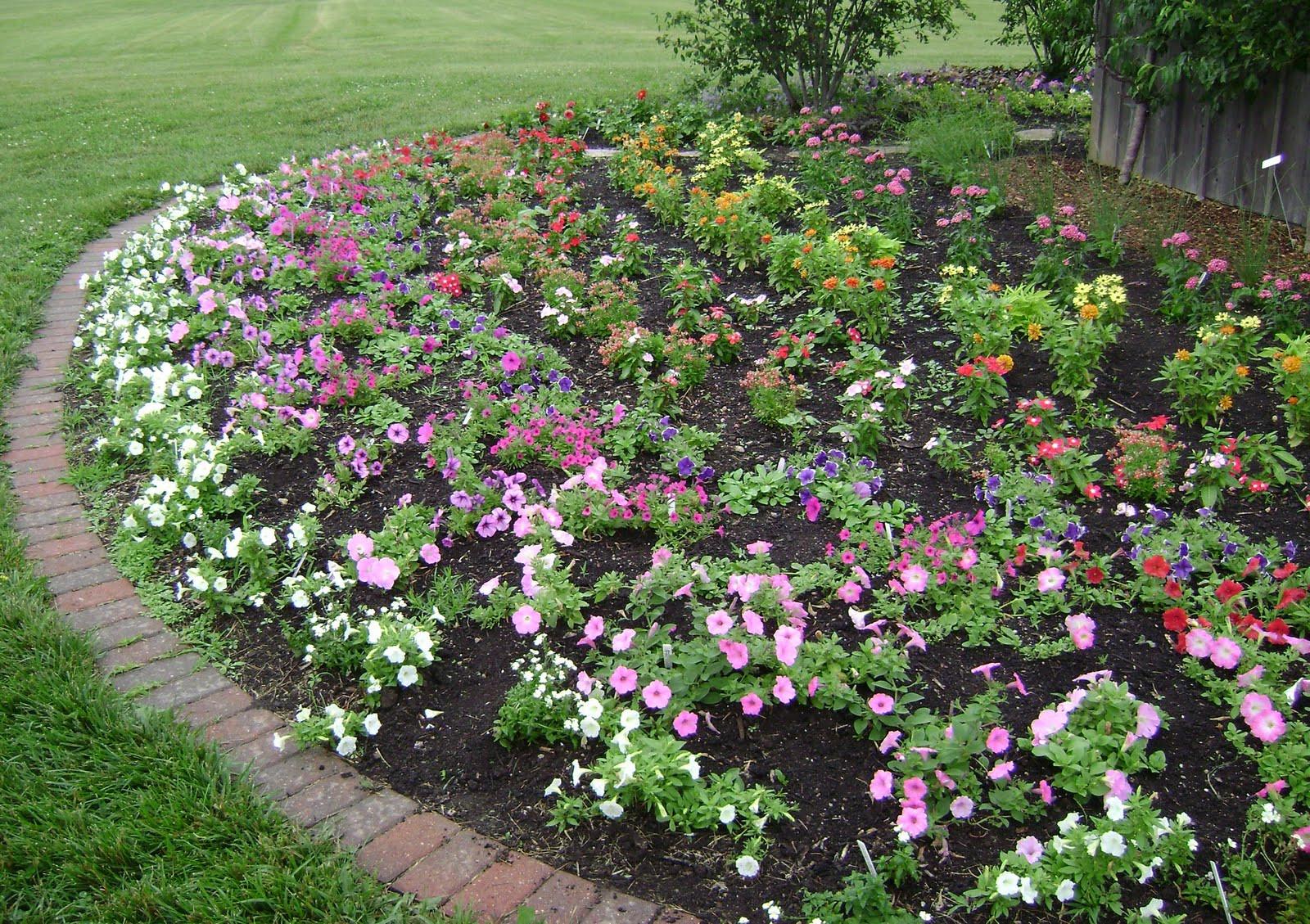 Best ideas about Rose Garden Ideas . Save or Pin Rose Garden Ideas Now.