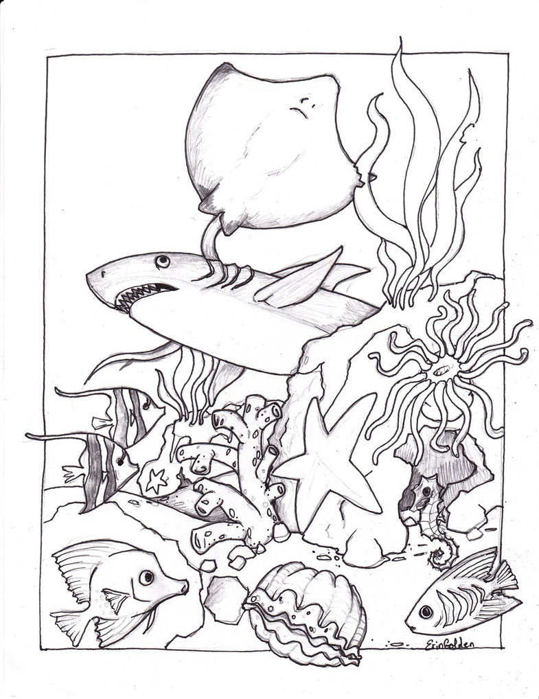 Sea Creature Coloring Pages  Free Printable Ocean Coloring Pages For Kids