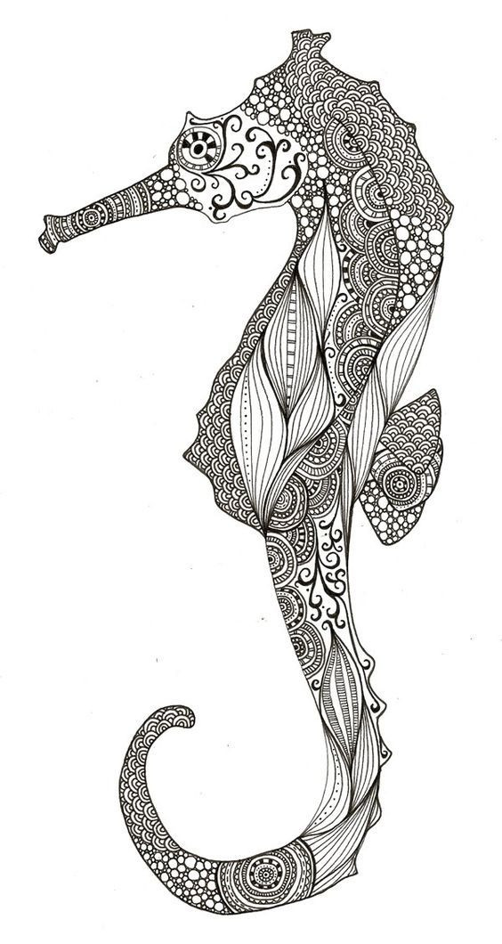 Seahorse Coloring Pages For Adults  Seahorse Adult Coloring Pages AZ Coloring Pages