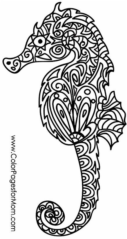 Seahorse Coloring Pages For Adults  303 best Coloring Pages for Adults images on Pinterest
