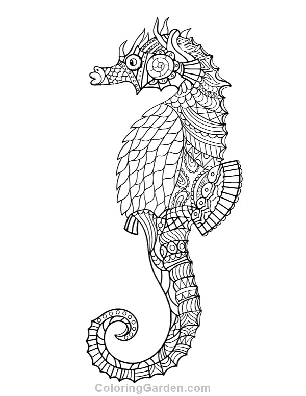 Seahorse Coloring Pages For Adults  Seahorse Adult Coloring Page