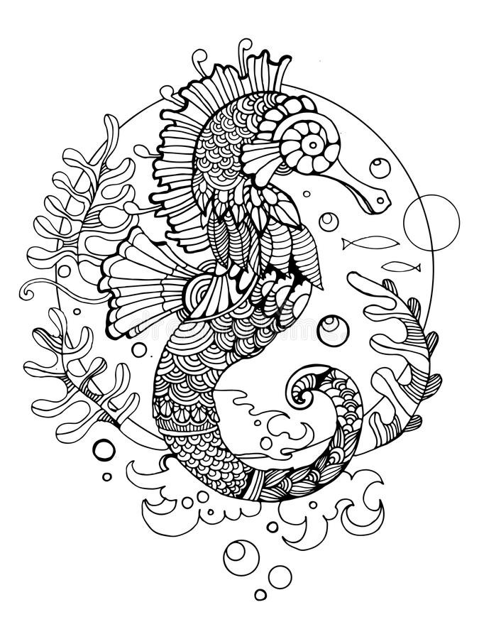 Seahorse Coloring Pages For Adults  Sea Horse Coloring Book For Adults Vector Stock Vector