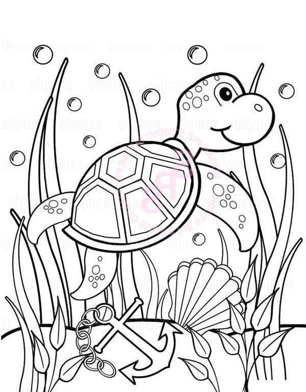 Seaweed Coloring Pages  Baby Sea Turtle Play Between Seaweed – free coloring sheet