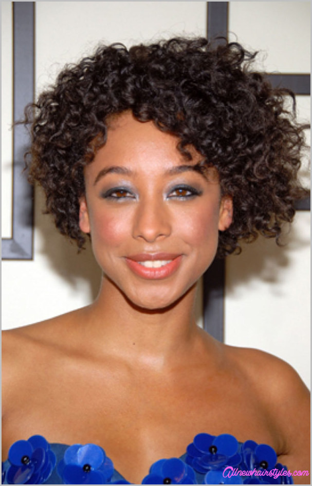 Short Naturally Curly Hairstyles  Short cut natural curly hairstyles AllNewHairStyles