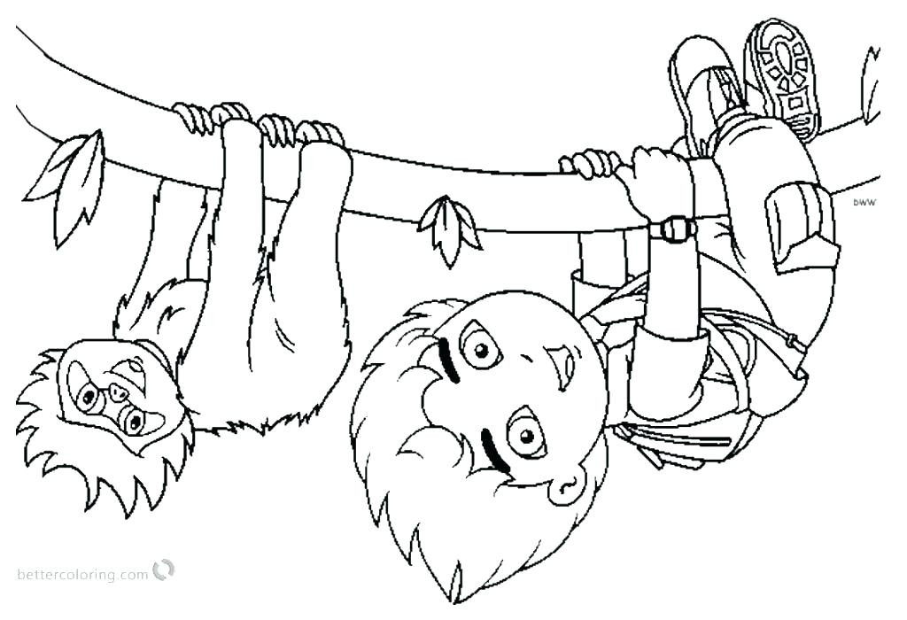Sloth Coloring Sheets For Boys  Sloth Coloring Pages Sloth Coloring Pages Page With Lovely