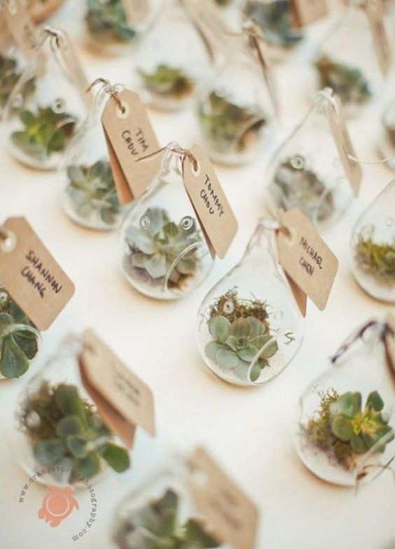Small Wedding Gift Ideas  11 Fresh Wedding Favors For The Eco Chic Couple