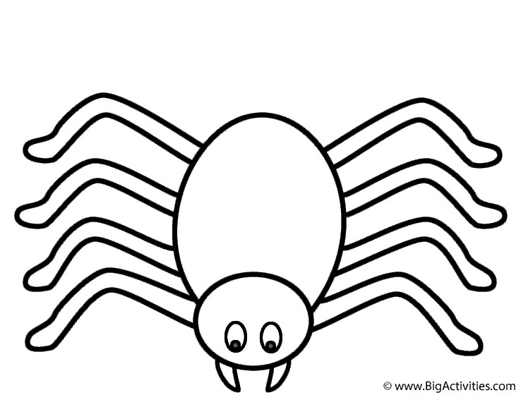 Spider Coloring Pages For Kids  Spider Coloring Page Halloween