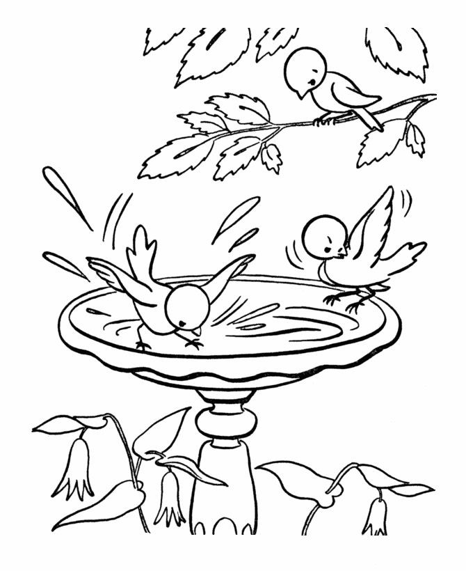 Spring Coloring Pages Free Printable  307 Free Printable Spring Coloring Sheets for Kids