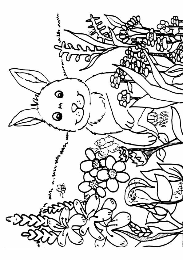 Spring Coloring Pages Free Printable  Spring Coloring Pages Best Coloring Pages For Kids