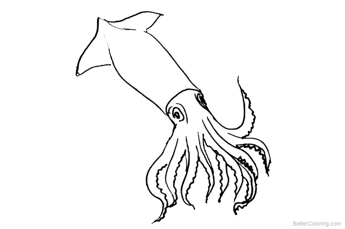 Best ideas about Squid Coloring Pages . Save or Pin Squid Coloring Pages Clipart Free Printable Coloring Pages Now.
